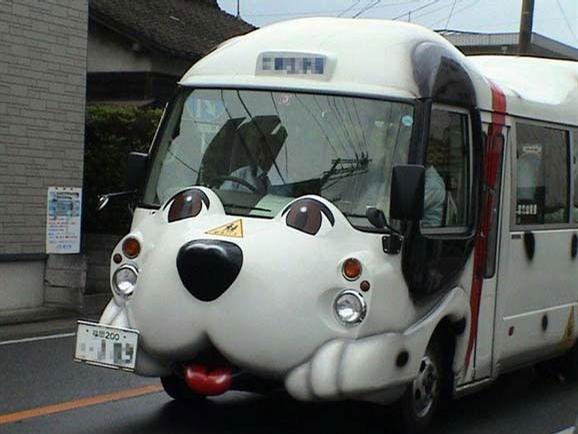 autobus-perro