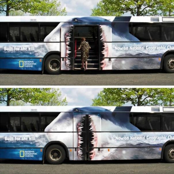 autobús tiburón